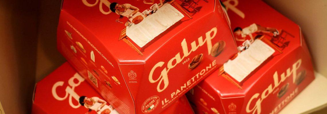 GV Christmas Galup1